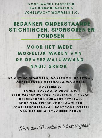 Tankadfertinske Foar Bydrage Oan De Ierdswellewand